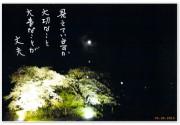 201300416_1_big